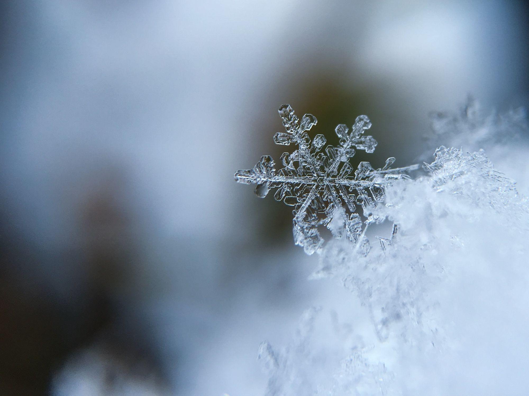 snowflake-1245748-1609861422.jpg